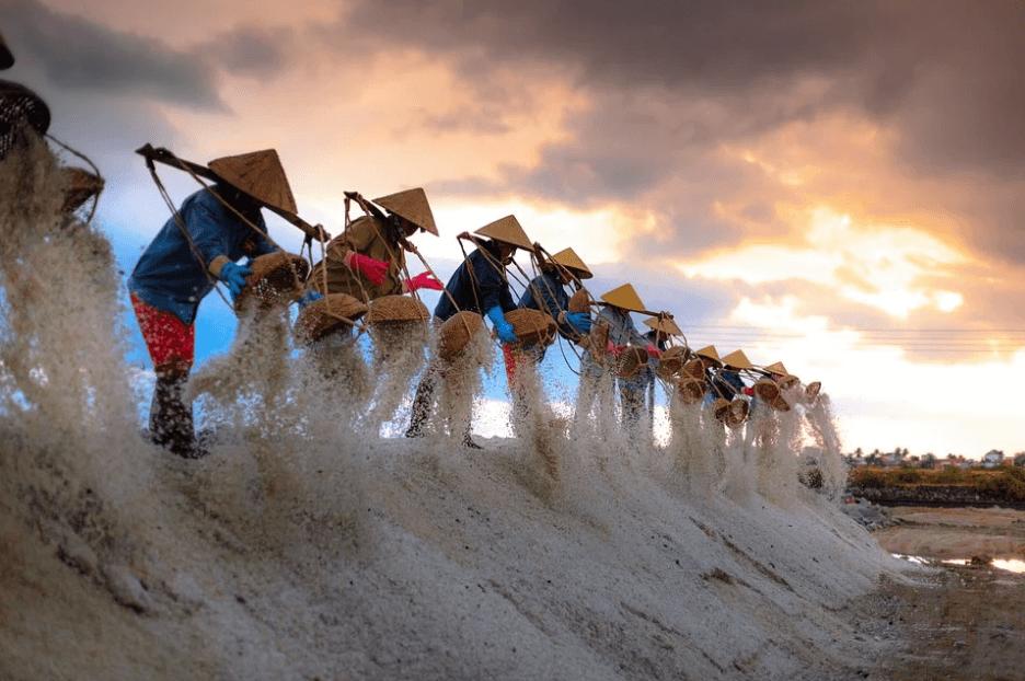Harvesting sea salt for teeth and gums