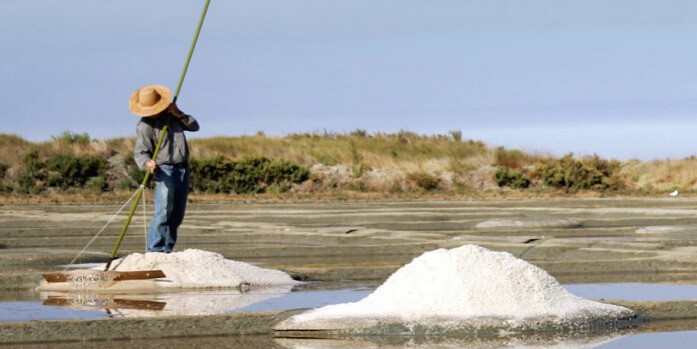 french paludier harvesting salt